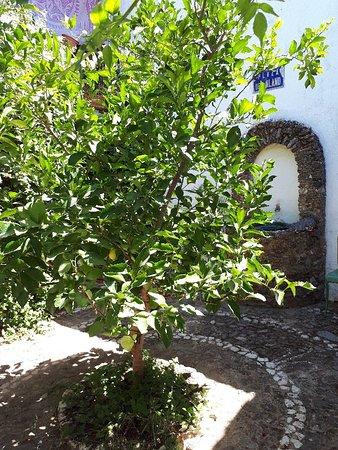 Castaño del Robledo, España: La Posada août 2019