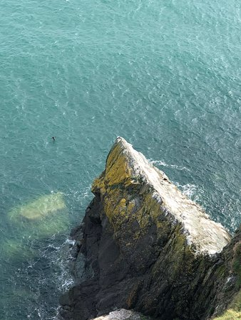 Bray Head Cliff Walk - 2019 All You Need to Know BEFORE You