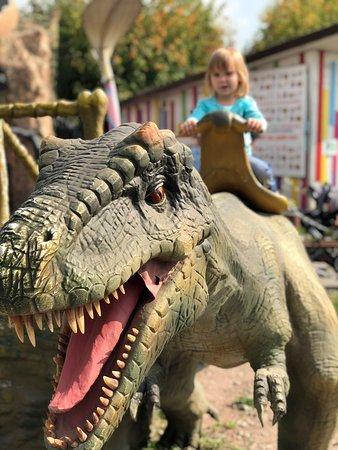Moscow, Russia: Отлично провели пару часов! Действительно «сказка»! Небольшой, уютный, чистый парк с детскими и взрослыми аттракционами. Ребёнок в восторге, а это самое важное). Да, цены завышены, за 2 часа активно посетили парк динозавров, колесо обозрения, контактный зоопарк и ещё 2-3 места съев по мороженому- потратили 5000₽, с учетом бонусов при покупке карты парка. В целом- не пожалели, разок в месяц можно посетить).