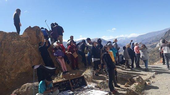 Colca Cañon, Peru: Mirador Antahuilque disfrutando de una vista del cóndor en lo alto .