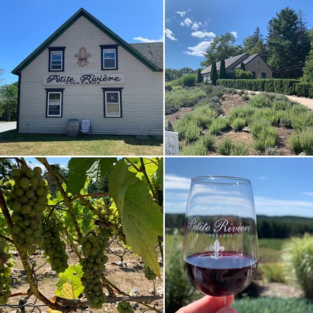 Lovely Vineyard and Winery