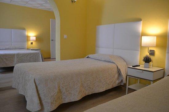 Garcia de Orta - Alcamim Guesthouse