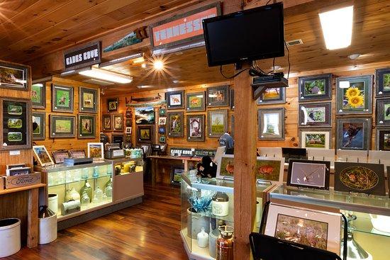 Cades Cove Gallery