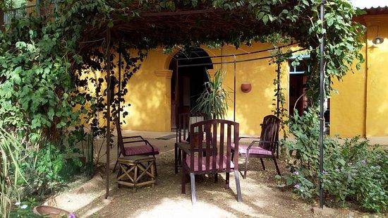 Podor, Senegal: La tonnelle que le jasmin a quasiment recouverte. Un lieu très agréable pour passer du temps à l'ombre dans le jardin