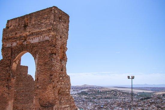 Habibi Tours Morocco