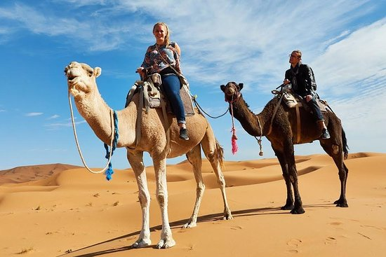 Morocco Experience Trips