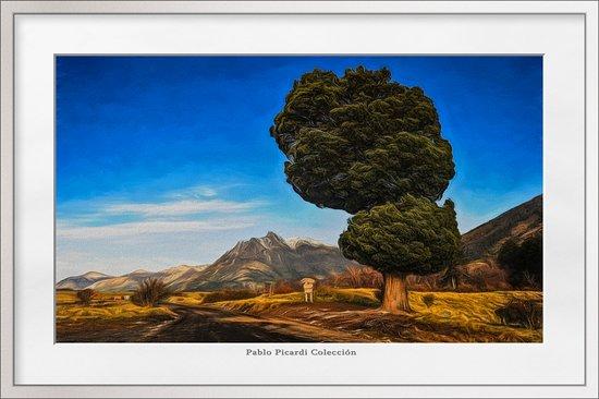 Lanin National Park, Argentina: Parque Nacional Lanin