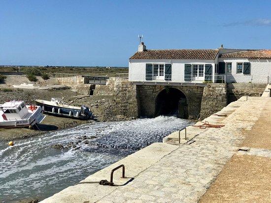 Moulin a Marée Photo