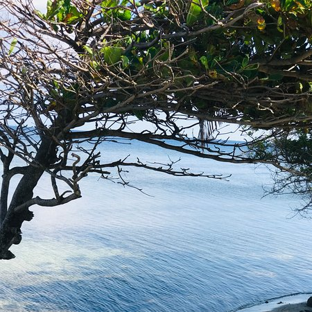 Flowers Bay, הונדורס: Beautiful and calm day  in Roatan 