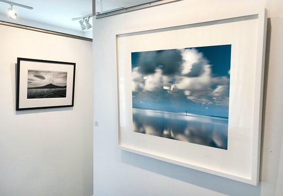 Alex Ferrone Gallery