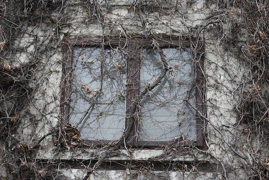 Boekarest Haunted City Game: Horror ...
