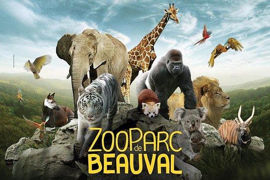 美丽的动物园-私人旅行