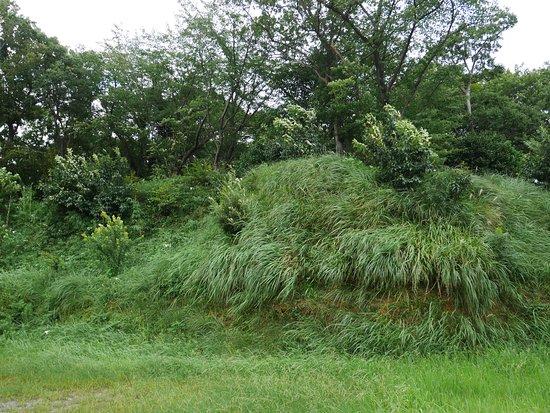 Ishizuka Yama Mound