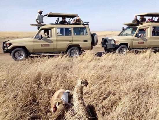 Simba Adventures