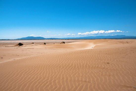 Terres de l'Ebre, España: Sembra un paesaggio da pieno Sahara, ma in realtà ci troviamo a circa 170 chilometri a sud-ovest di Barcellona, lungo l'ultima parte del corso del fiume Ebro prima che il corso d'acqua sfoci in mare. Le dune di sabbia si alternano alle risaie, in una delle più importanti zone umide del Mediterraneo.