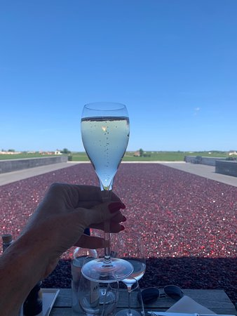 Bella Wine Tours Bordeaux 2019 All You Need to Know