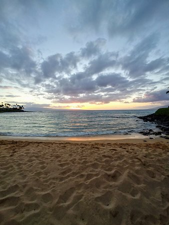 Napili Beach (Lahaina) - 2019 All You Need to Know BEFORE