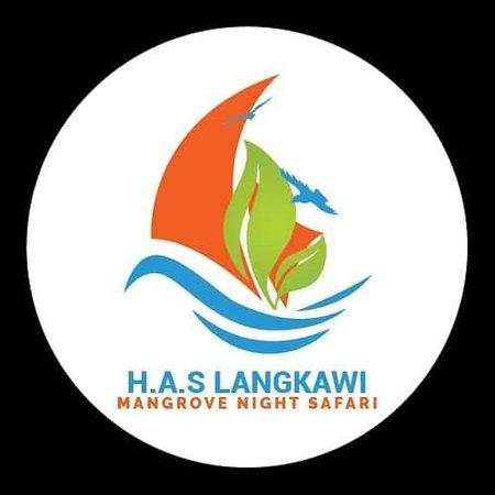 Langkawi Mangrove Night Safari