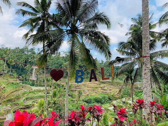 Best Bali Tour