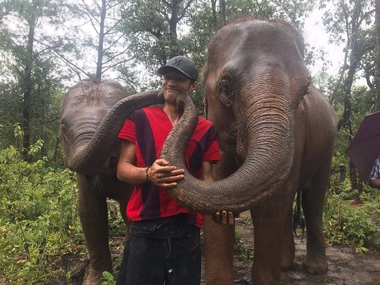 Elephant Freedom Village