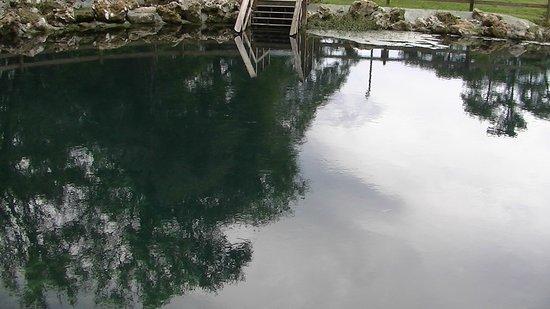 Trenton, FL: Otter Springs