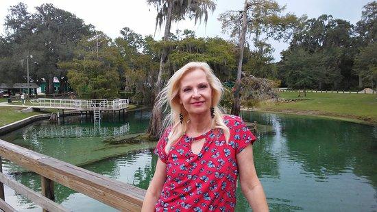 Bell, FL: Hart Springs