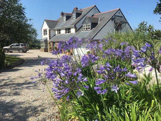St Kew Foto