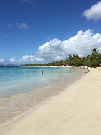 Saint-Etienne-au-Mont, Frankrike: plage de sable blanc , décor idyllique , au sud de la  Martinique