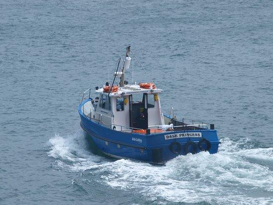 Полуостров Гауэр, UK: Met dit bootje maken we de overtocht naar Gower island, kom op tijd voor je kaartje (maar uren voor verkoop is echt overdreven). De beperkte toegang is geen overbodig iets, dit moet je willen beschermen voor massa toerisme.