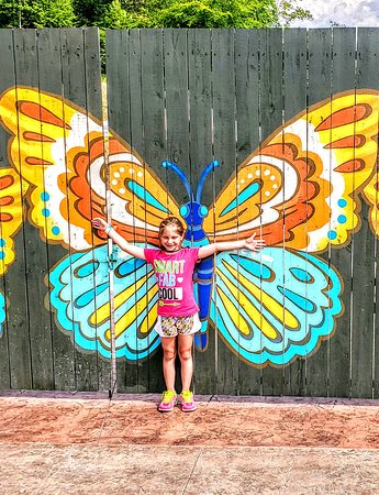 Dollywood (Pigeon Forge) - 2019 All You Need to Know BEFORE