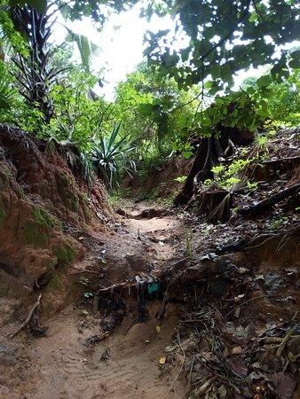 Visite des 6 villages de houlouf à Oussouye. Une excursion de 2h30mn à pied ou à vélo.