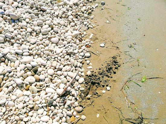 Spiaggia di giache bianche