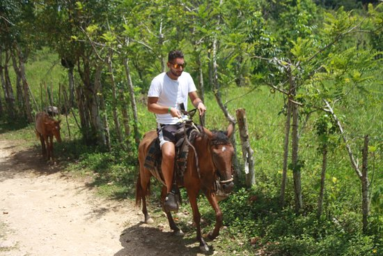 Valokuva: Bayaguana