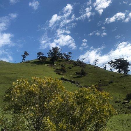 Bilde fra Strath Creek