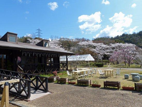 Shiga-kenritsu Omi Fuji Karyoku Park