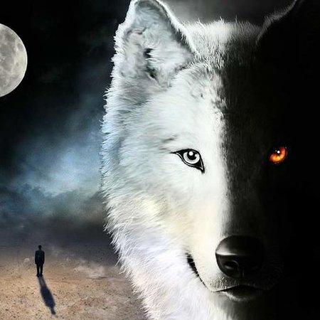 Európa: Attenti al lupo