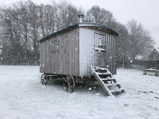 Heddon-on-the-Wall, UK: Nothing stops Barnacre opening, rain, sun or snow! This is our shepherds hut, made from reclaimed oak and insulated with alpaca fibre - wonderful!