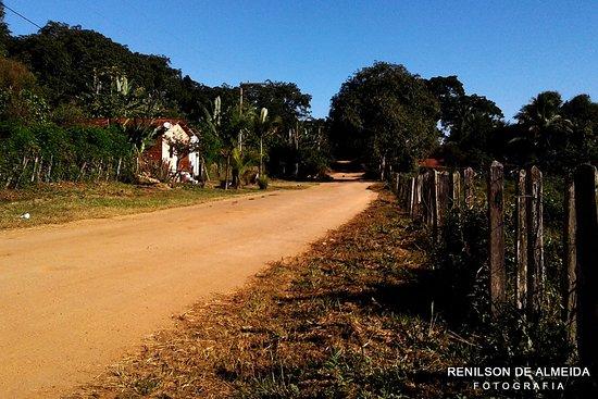 Ibirataia 사진