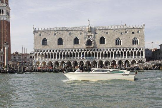 Venice Quality Transfers