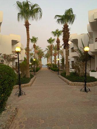 Landscape - Marlin Inn Azur Resort Photo