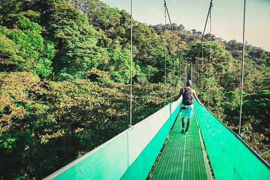 Sky Walk Fra Monteverde