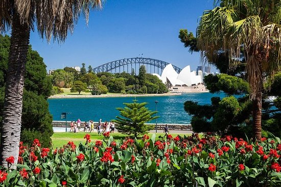 Sydney Private Day Tours - Sydney in ...