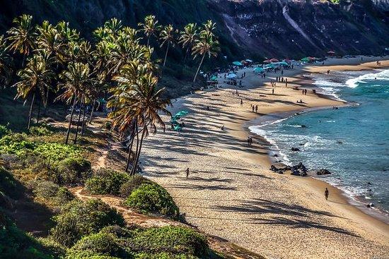 Pipa Beach de Natal