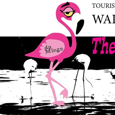Pink Flamingo Shuttle and Private Tours