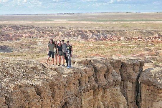 Gobi y pastizales Mongolia 7-8 dias