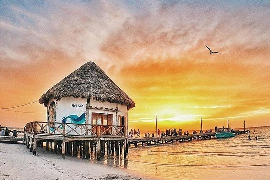 Splendida escursione a Holbox, Passion