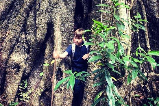 マラウイを探索する