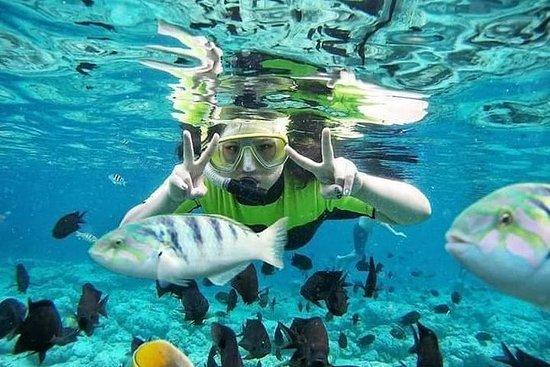 Snorkeling en la Laguna Azul de Bali...