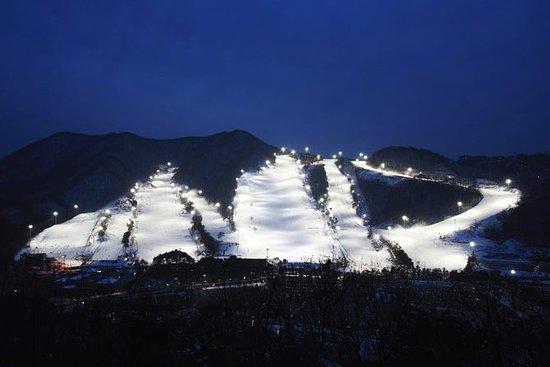 Jisan Ski Resort: excursão noturna de...
