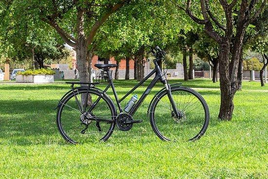 Alquiler de bicicletas de trekking en...